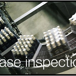 Case inspection